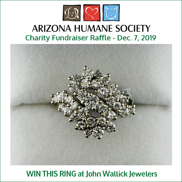 Win this diamond ring at John Wallick Jewelers Arizona Humane Society Charity Fundraiser on Dec. 7, 2019 from 10 AM - 4 PM. The ring is worth $5000.00.