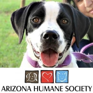 Join John Wallack jewelers in Sun City Arizona for our first Just Be Paws We Love Them charity fundraiser and supply drive benefiting the Arizona Humane Society on November 21, 2015 from 10 AM to 4 PM.
